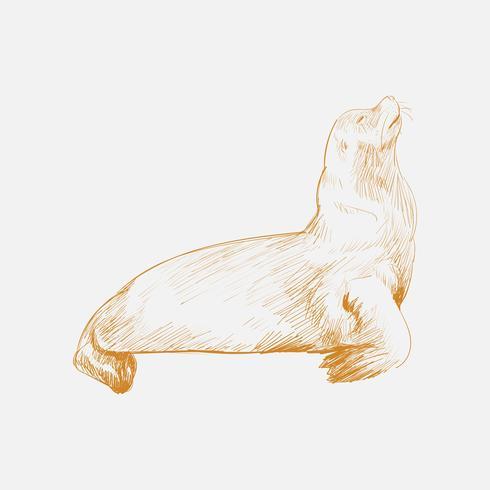 Estilo de dibujo de ilustración de la colección de vida marina.