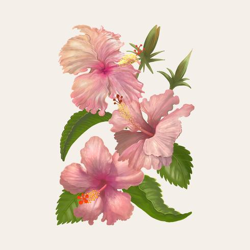 Dibujo de ilustración de flor de acuarela