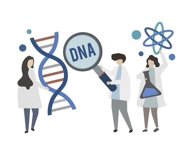 Doutores, segurando, gene genoma, conceito, ilustração