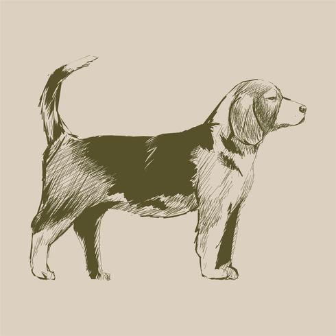 Illustrationszeichnungsart des Hundes