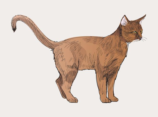 Insieme di arte di vettore dell'illustrazione degli animali