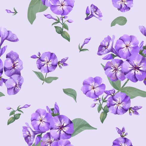 Modello di phlox viola disegnato a mano