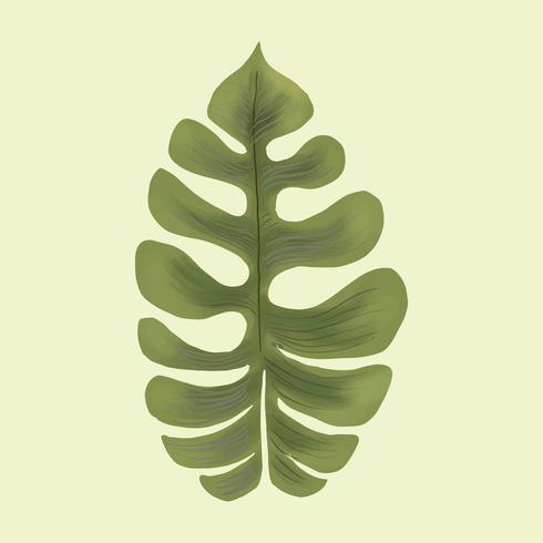 Drawing of a leaf