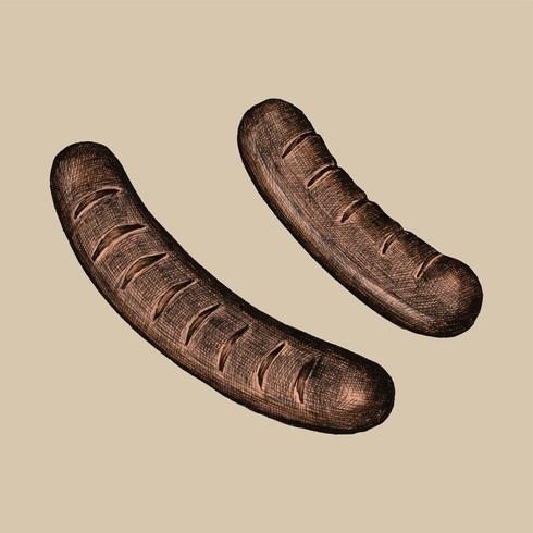 Illustration of two grilled sausages