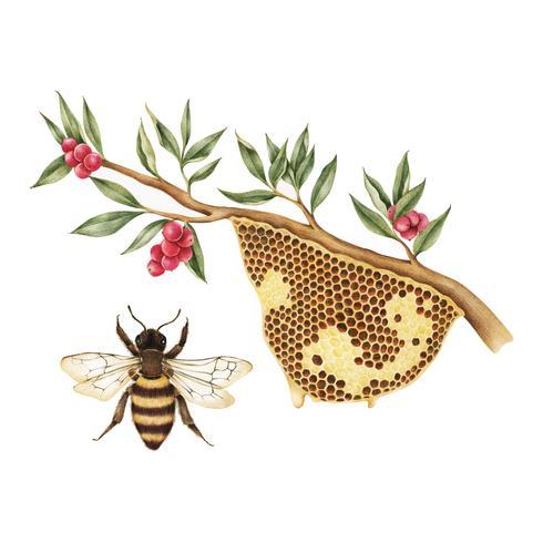 Estilo de dibujo de ilustración de la colmena de abeja