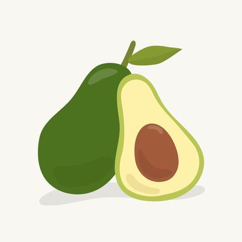 Dibujado a mano ilustración de fruta aguacate