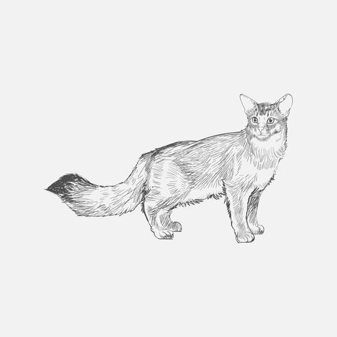 Stile Di Disegno Dell Illustrazione Del Gatto Scarica Gratis Arte