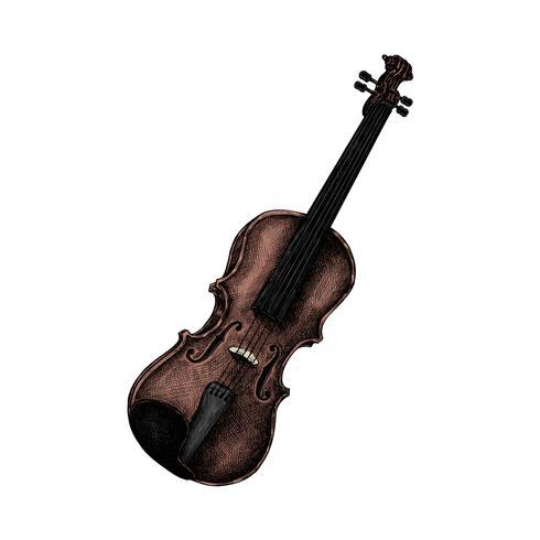 Hand gezeichnete Skizze einer Violine