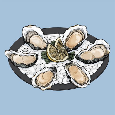 Handgezeichnete Austern-Salzwasser-Muschelplatte