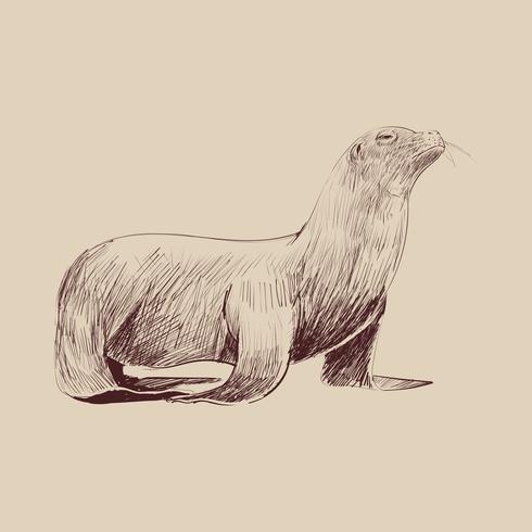 De stijl van de illustratietekening van het mariene leveninzameling