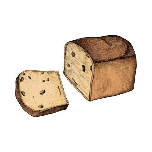 Ilustração, de, cortado, pão branco