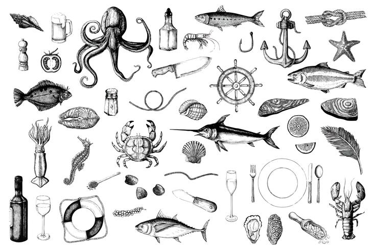 Main dessinée du concept de fruits de mer