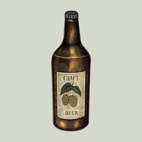 Illustration of a bottle of craft beer