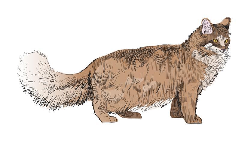 Dieren Illustratie Vector Art Set
