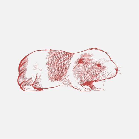 Illustrationszeichnungsart der Ratte