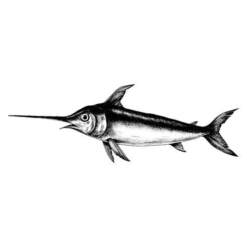 Handdragen svärdfisk isolerad