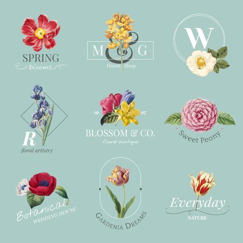 Conjunto de logotipo de marca de flor