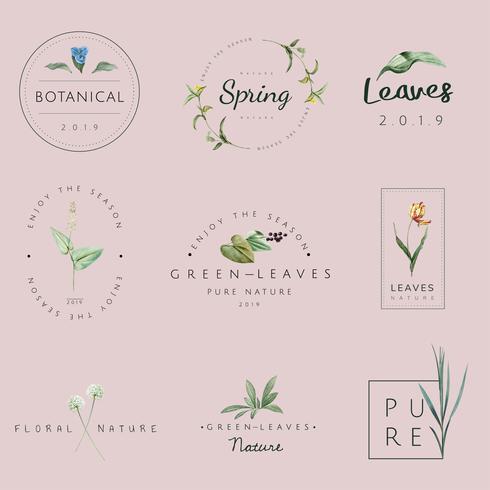 Conjunto de vectores de naturaleza y planta logo.
