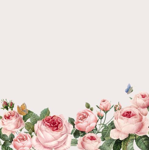 Dibujado a mano marco de rosas rosadas en vector de fondo beige