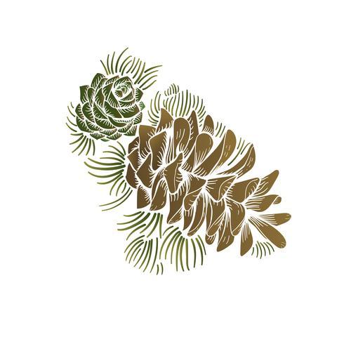 Vektor av pinecone