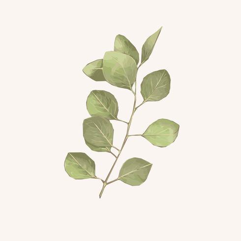 Illustration der grünen Blattaquarellart