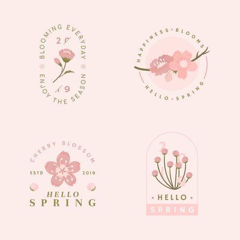 Collezione di fiori di ciliegio