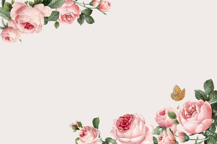 Hand getekend roze rozen frame op beige achtergrond vector
