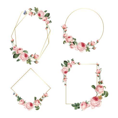 Übergeben Sie gezogene leere Rahmen der rosa Rosen auf weißem Hintergrundvektorsatz