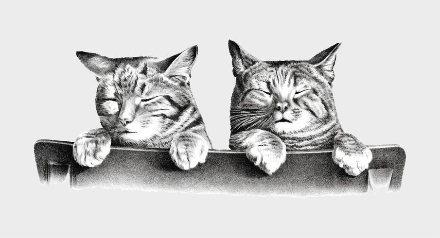 Katter av Thomas Hunter. Original från Library of Congress. Digitalt förbättrad av rawpixel.