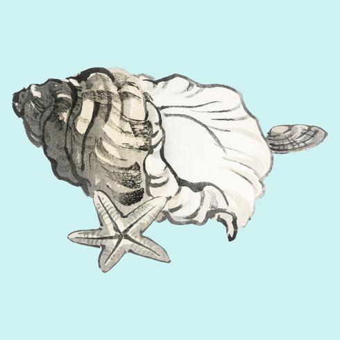 Stjärnfisk och Conchby K? No Bairei (1844-1895). Digitalt förbättrad från vår egen ursprungliga 1913-upplagan av Bairei Gakan.