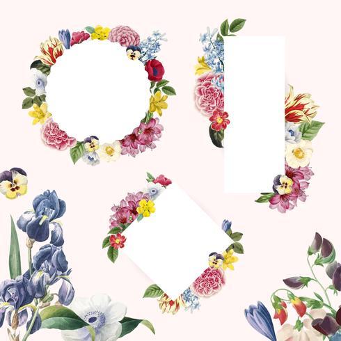 Floral, fundo, ilustração