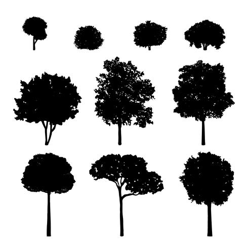 Collection of tree silhouettes vector