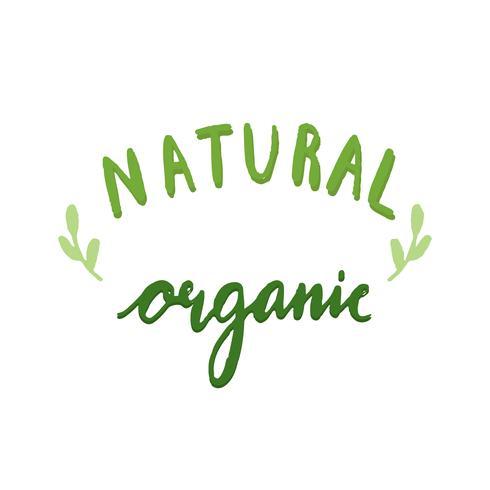 Vecteur de typographie organique naturel en vert