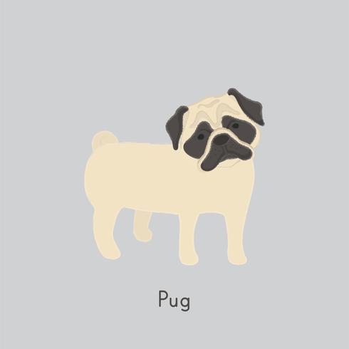 Jolie illustration d'un chien carlin