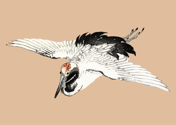 Hirondelle volante de K? No Bairei (1844-1895). Amélioré numériquement de notre propre édition originale de 1913, Bairei Gakan. vecteur