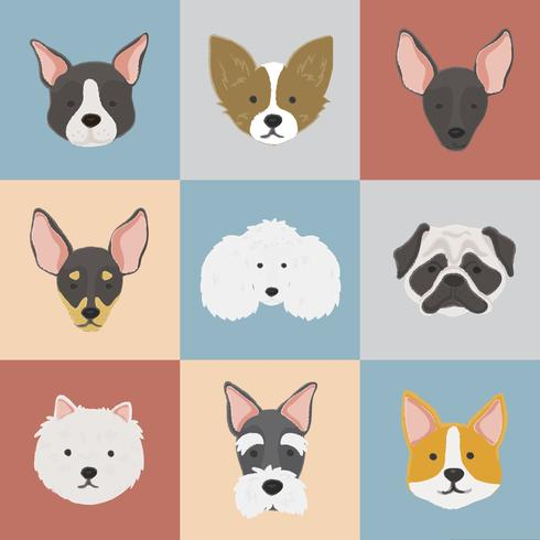 Vector de colección de caras de raza de perro