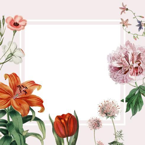 Diseño floral del marco vector