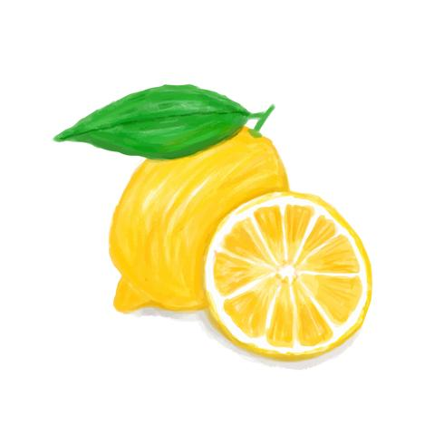 Hand drawn lemon watercolor style