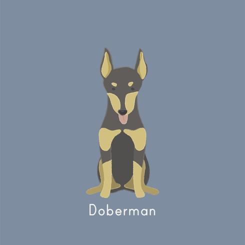 Ilustração fofa de um cão doberman
