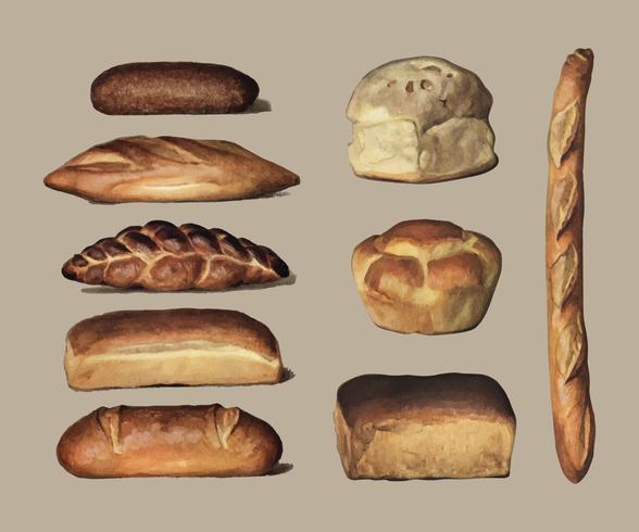 The Grocer's Encyclopedia (1911), une collection vintage de différents types de pains cuits au four. Augmenté numériquement par rawpixel.