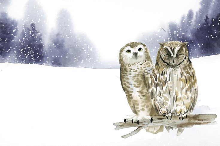 Paar uilen in een winter wonderland aquarel stijl vector