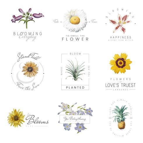 Flores con comillas vector
