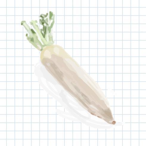 Handgezeichnete Gemüse Aquarell Stil