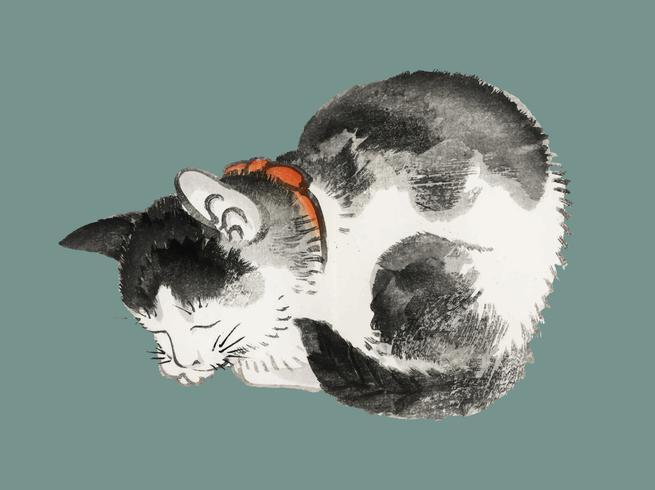 Gatto dormiente di K? No Bairei (1844-1895). Miglioramento digitale della nostra originale edizione 1913 di Bairei Gakan.