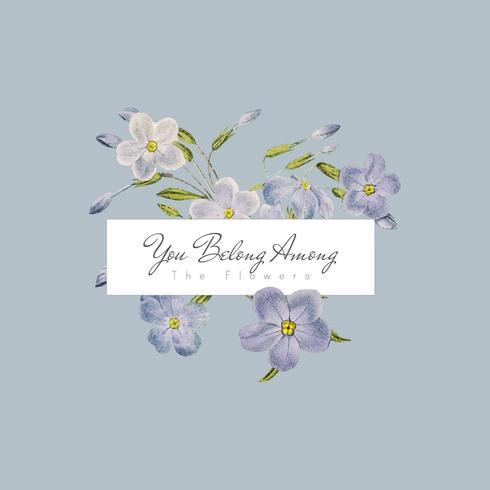 Banner de flores phlox