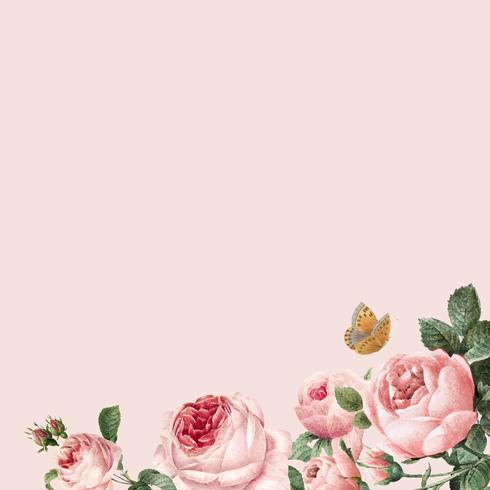 Dé el marco rosado dibujado de las rosas en vector rosado del fondo en colores pastel