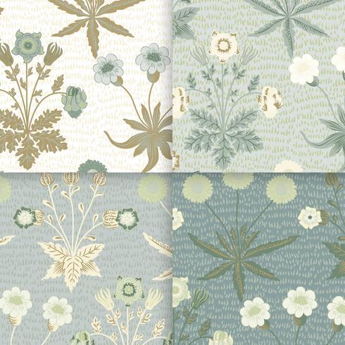 Illustration vintage de marguerite et de jasmin