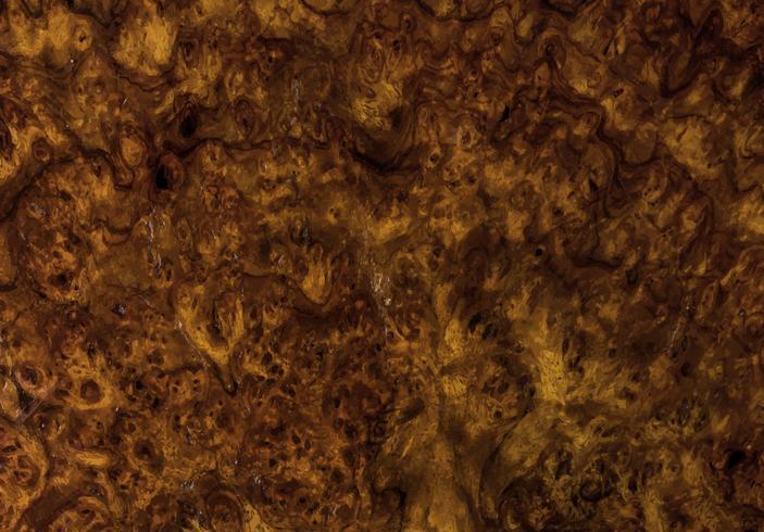 Cerca del patrón de madera con textura rústica