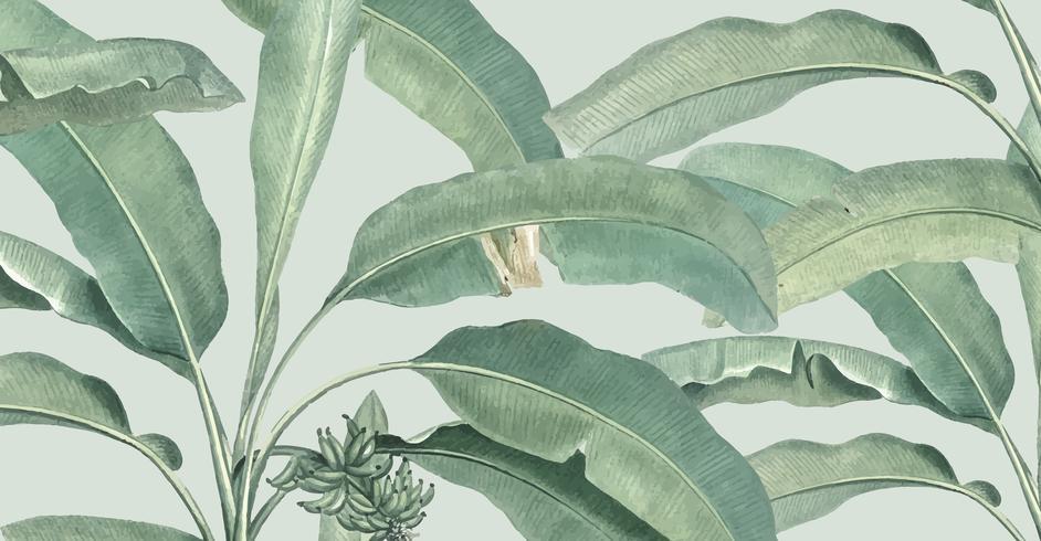 Ilustración de patrón de verano tropical