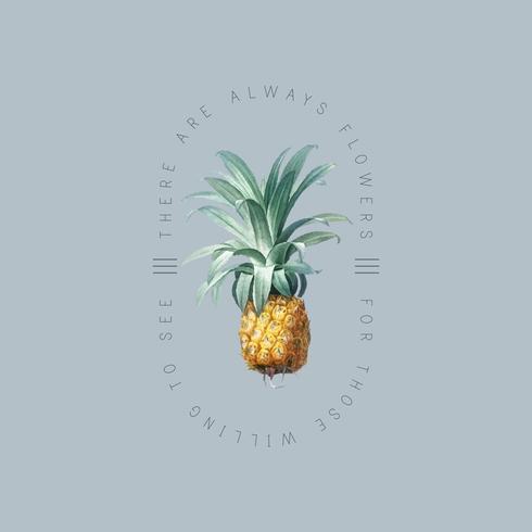 Placa de piña tropical